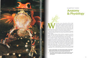 Frogs: inside their remarkable world.