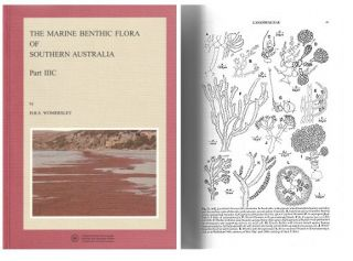The marine benthic flora of southern Australia, Rhodophyta: Part IIIC: Ceramiales - Ceremiaceae,...