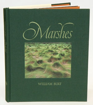 Marshes: the disappearing Edens. William Burt