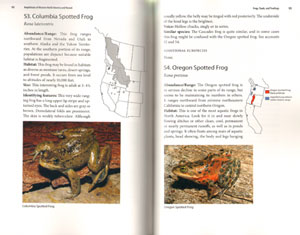 Guide and reference to the Amphibians of Western North America (North of Mexico) and Hawaii.