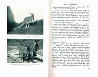 The wild animals of Australasia: embracing the mammals of New Guinea and the nearer Pacific islands. With a chapter on the bats of Australia and New Guinea by Ellis Le G. Troughton.