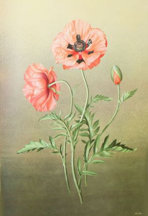 Flora Magnifica: selected and painted by the artist.