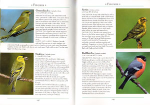 Naturalist's guide to the birds of Britain and Northern Europe.