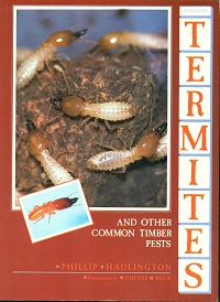 Australian termites and other common timber pests. Phillip Hadlington