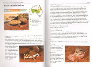 An introduction to keeping and breeding Australian reptiles.