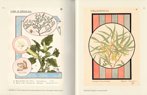 For the love of nature: E.E. Gostelow's birds and flowers.