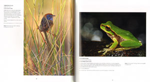 ANZANG seventh collection: Australian nature photography.