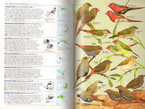 Field guide to the birds of Australia.