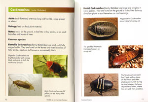 Wildlife of the Northern Territory: volume one, common insects.