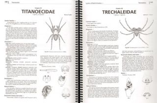 Spiders of North America: an identification guide.
