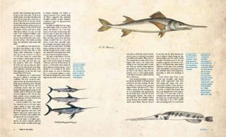 Fishes of the open ocean: a natural history and illustrated guide.