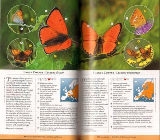 Butterflies of Britain and Europe: a photographic guide.