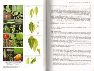 Plant identification: creating user-friendly field guides for biodiversity management.
