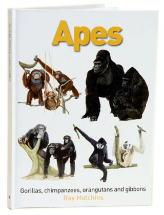 Apes: Gorillas, Chimpanzees, Orangutans and Gibbons. Ray Hutchins.