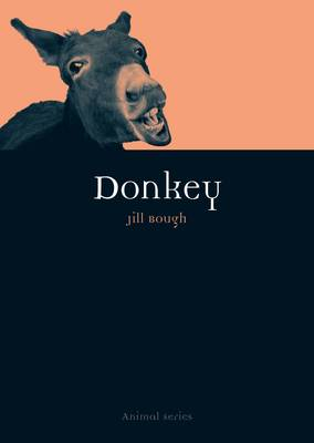 Donkey. Jill Bough.
