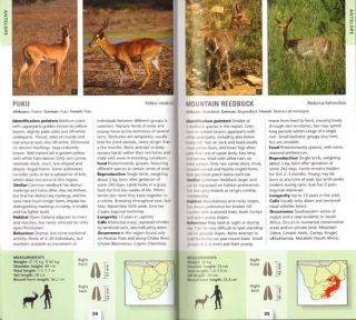 Pocket guide mammals of Southern Africa.