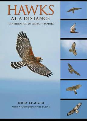 Hawks at a distance: identification of migrant raptors. Jerry Liguori, Pete Dunne