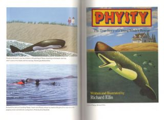 The Great sperm whale: a natural history of the ocean's most magnificent and mysterious creature.