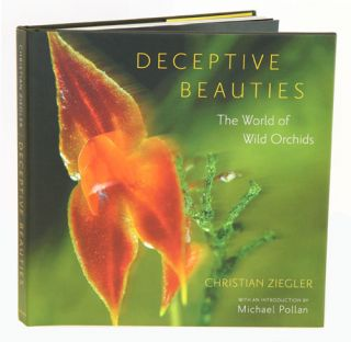 Deceptive beauties: the world of wild orchids. Chris Ziegler