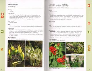 Poisonous plants: a guide for parents and childcare providers.