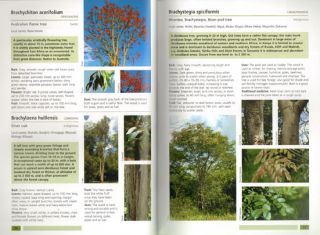 Field guide to common trees and shrubs of East Africa.