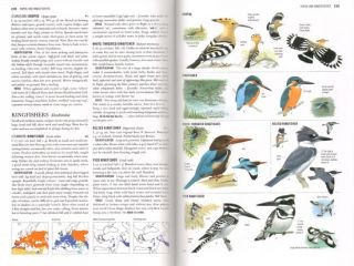 Collins bird guide: the most complete guide to the birds of Britain and Europe.