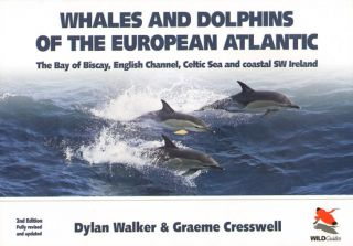 Whales and dolphins of the European Atlantic, the Bay of Biscay, English Channel, Celtic Sea and...