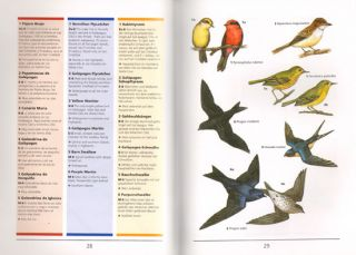 Galapagos: a guide to the animals and plants.