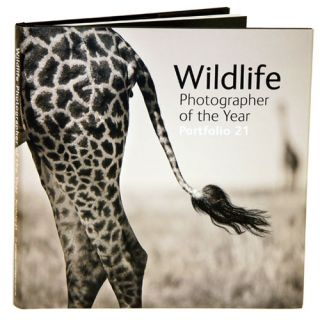 Wildlife photographer of the year: portfolio 21. Rosamund Kidman Cox.