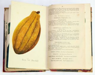 Economic Plants: an index to economic products of the vegetable kingdom in Jamaica.