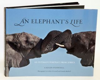 An elephant's life: an intimate portrait from Africa. Caitlin O'Connell, Timothy Rodwell.