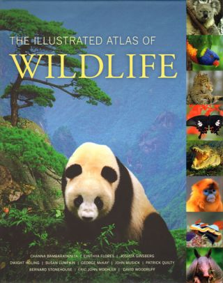 The illustrated atlas of wildlife. Channa Bambaradeniya.