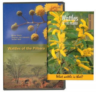 Wattles of the Pilbara