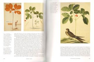 Knowing nature: art and science in Philadelphia, 1740-1840.