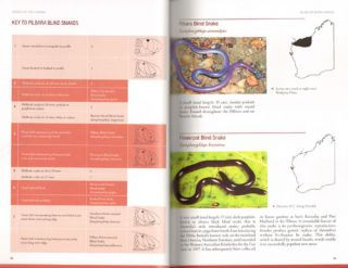 Field guide to snakes of the Pilbara: Western Australia.