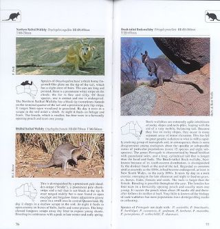 A photographic guide to mammals of Australia.