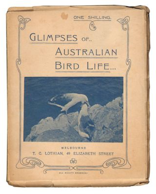 Glimpses of Australian bird life: thirty-one original photographs direct from nature. Robert Hall