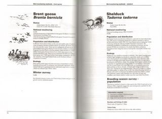 Bird monitoring methods: a manual of techniques for key UK species.