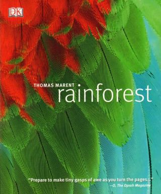 Rainforest. Thomas Marent
