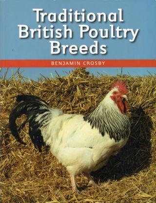 Traditional British poultry breeds. Benjamin Crosby