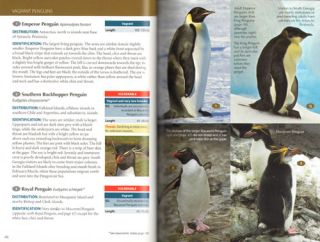 Field guide to the wildlife of South Georgia.