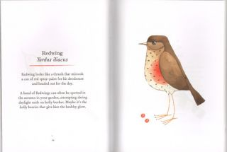 Our garden birds: a bird for every week of the year.