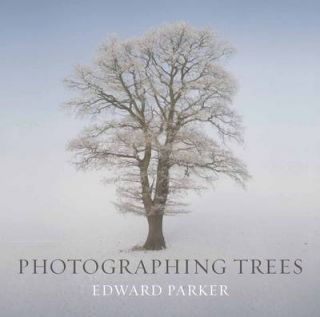 Photographing trees. Edward Parker