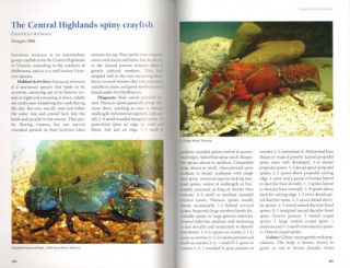 A guide to Australia's spiny freshwater crayfish.