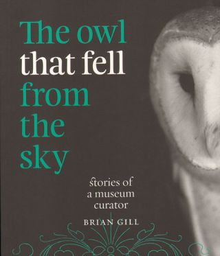 The owl that fell from the sky: stories of a museum curator. Brian Gill