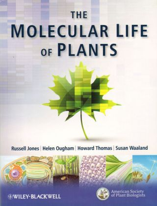 The molecular life of plants.