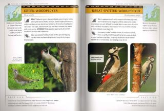 Identification guide to birds of Britain and Northern Europe.