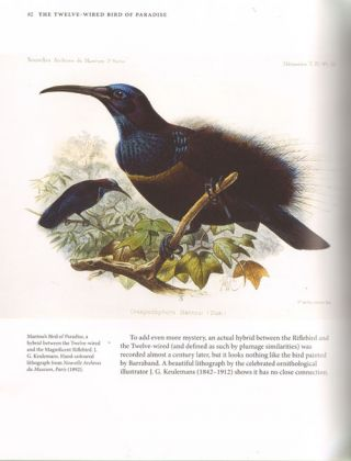 Drawn from paradise: the discovery, art and natural history of the birds of paradise.