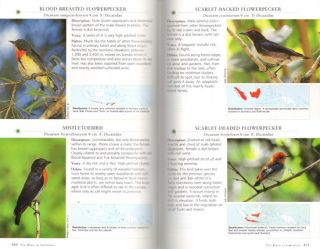 A photographic guide to the birds of Indonesia.