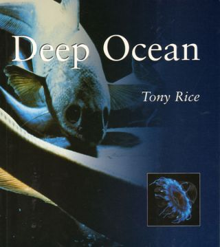 Deep ocean. Tony Rice.
